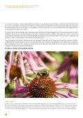 Risques environnementaux des pesticides néonicotinoïdes - Page 4