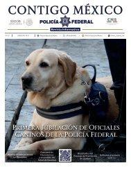 revista informativa 33_1