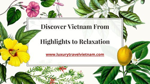 Discover Vietnam From Highlights to Relaxation