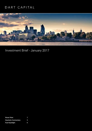 Investment Brief - January 2017