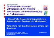 Vortrag 2 Beispielhafte Renaturierungsprojekte von tiefenerodierten ...