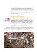 DAS REGENWURM-MANIFEST - Seite 4