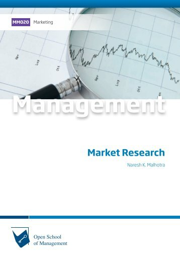 MM020 Market Research (Excerpt)