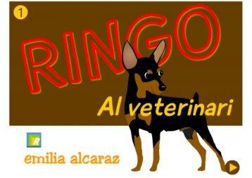 Ringo al veterinari1