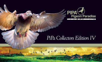 Pipa Collectors Edition IV Chinese