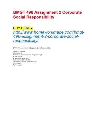 BMGT 496 Assignment 2 Corporate Social Responsibility