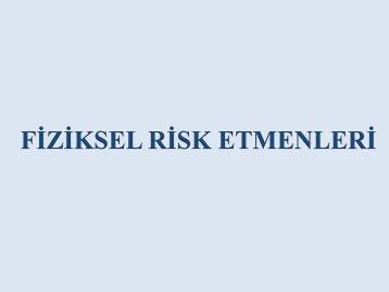 2677,fiziksel-risk-etmenleripdf
