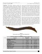 Mastacembelus malabaricus..Redescription - Page 4
