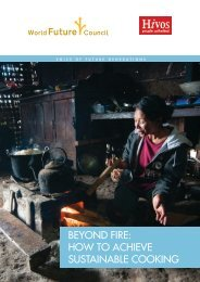 Beyond Fire How to Achieve Sustainable Cooking