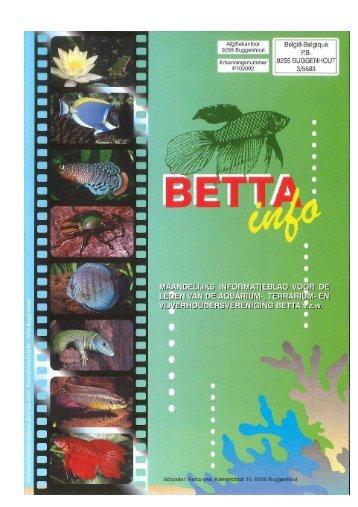 2017 - 01 - Betta-Info