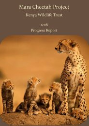 KWT Mara Cheetah Project - Annual report 2016