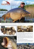 Imperial Fishing Katalog 2017 IT - Page 5