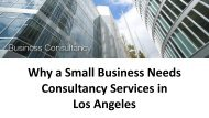 Why a Small Business Needs Consultancy Services in Los Angeles