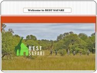 Welcome to BEST SAFARI