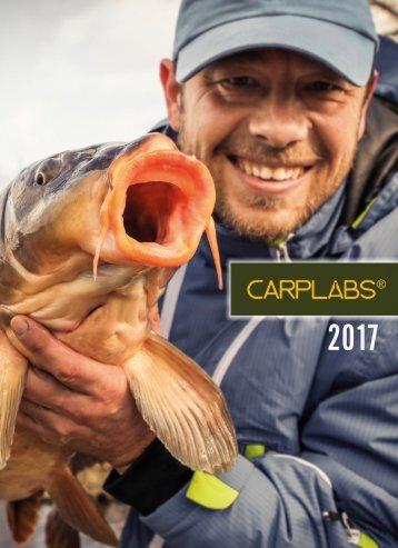 CARPLABS 2017 RU