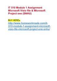 IT 510 Module 1 Assignment Microsoft Visio file & Microsoft Project one (SNHU)