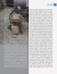 YEMEN HORRIFIC KILLING OF CIVILIANS - Page 4