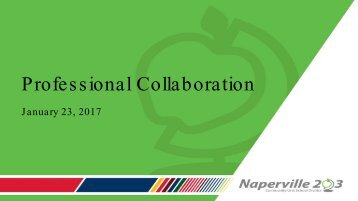 Profes s ional Collaboration
