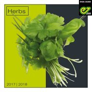 Herbs 2017-2018