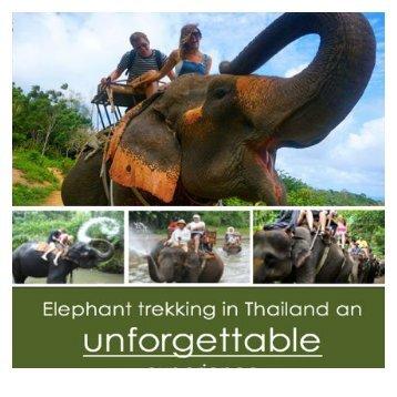 folder olifanten