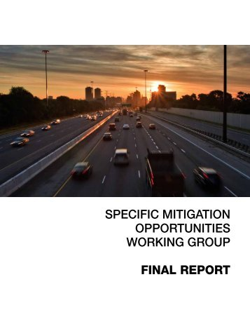 SPECIFIC MITIGATION OPPORTUNITIES WORKING GROUP FINAL REPORT