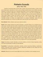 Plantas Terapêuticas - Page 7
