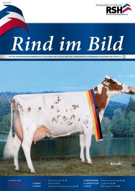 // Rind im Bild 3/2011 1 - Rinderzucht Schleswig-Holstein e.G.