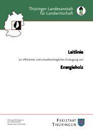 Leitlinie Energieholz - Thüringer Landesanstalt für Landwirtschaft