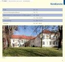 Alte Springer - Seite 7