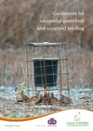Guidelines for successful gamebird and songbird feeding