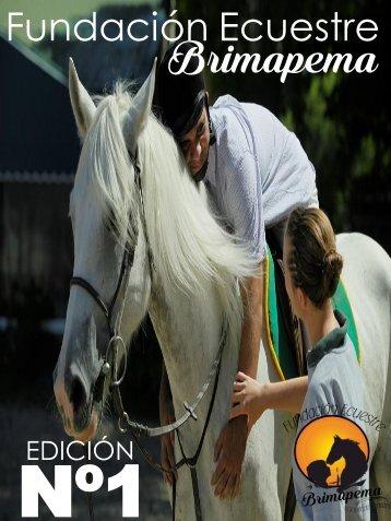 portada 4 revista
