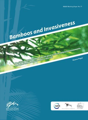 Bamboos and Invasiveness