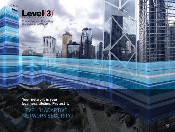 LEVEL 3 ADAPTIVE NETWORK SECURITY
