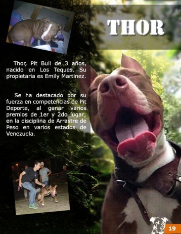 19 Thor
