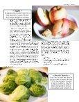 Fall 2015 | Homeschool Science - Page 5