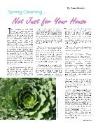 Spring 2015 | New Beginnings - Page 4