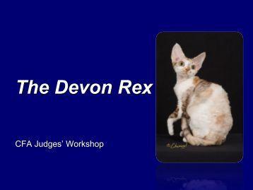 The Devon Rex