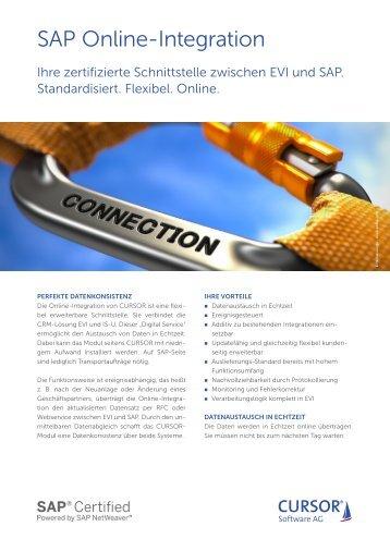 SAP-Webservice-Online-Integration
