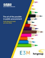 The art of the possible in public procurement