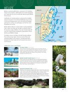 TI Central and South America - Page 7