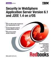 Download PDF - IBM Redbooks