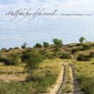 Central Botswana - Seite 2