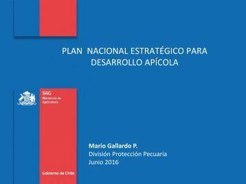 PLAN NACIONAL ESTRATÉGICO PARA DESARROLLO APÍCOLA