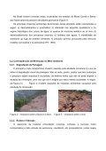 Meio Ambiente e Mineração - Page 6