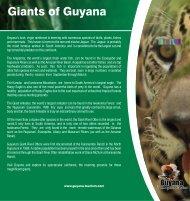 Giants of Guyana