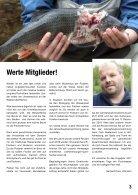 WSFV_Nachrichten_2017_web - Seite 3