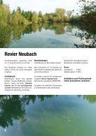 WSFV_Nachrichten_2017_web - Seite 6
