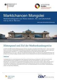 Marktchancen Mongolei