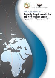 Capacity Requirements for the New African Vision