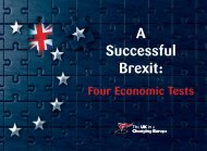 A Successful Brexit